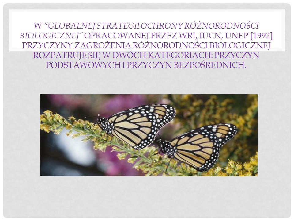 W Globalnej strategii ochrony różnorodności biologicznej opracowanej przez WRI, IUCN, UNEP [1992] przyczyny zagrożenia różnorodności biologicznej rozpatruje się w dwóch kategoriach: przyczyn podstawowych i przyczyn bezpośrednich.